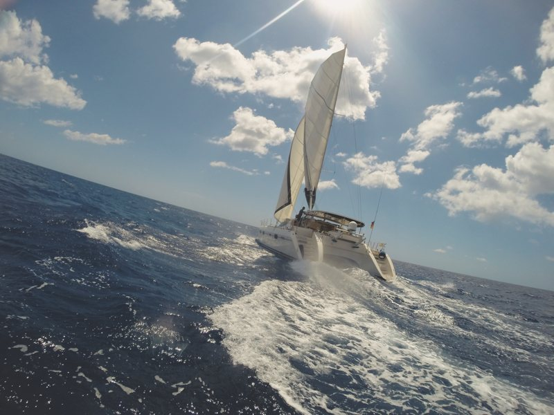 cogoa privelege catamaran